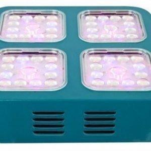 280W SH LED Kasvivalaisin ChloroBA