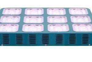 840W SH LED Kasvivalaisin ChloroBA