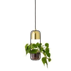Bloomingville Pot Lamp Riippuvalaisin Kulta / Lasi