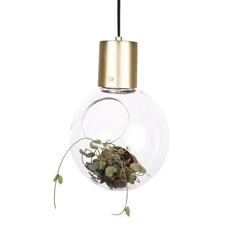 Globen Lighting Mini Hole Kattovalaisin Kirkas-Messinki