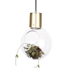 Globen Lighting Mini Hole Riippuvalaisin Kirkas Lasi / Messinki