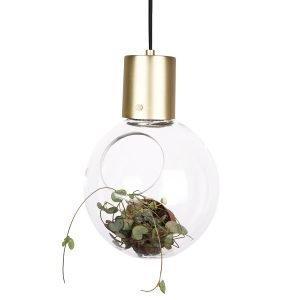 Globen Lighting Mini Hole Riippuvalaisin Kirkas / Messinki Ø20 Cm