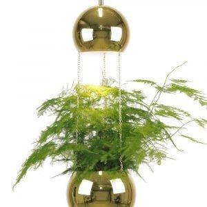 Globen Lighting Planter Ikkunavalaisin Messinkiä