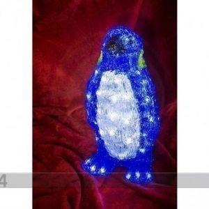 HÜ Akryylikoriste Pingviini Led Valoilla