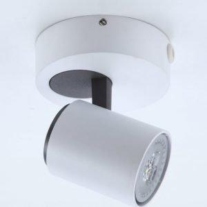 Kattovalaisin FocusLight Spike 35W 230V Ø 120mm matta valkoinen/harmaa