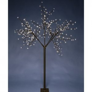 Kotikulta Kirsikkapuu 320 Led 200 Cm