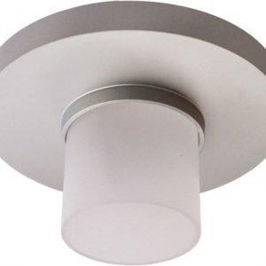 LED-alasvalo Loiste 24 7W 24V IP44 3000K 325 lm Ø 88 mm hopea