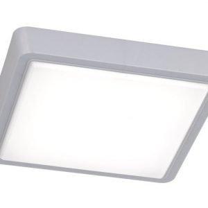 LED-kattovalaisin Plano 270x270x45 mm harmaa