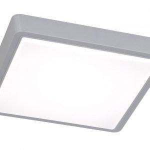 LED-kattovalaisin Plano 310x310x45 mm harmaa