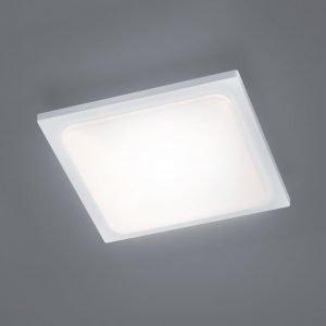 LED-kattovalaisin Trave 250x250x50 mm valkoinen