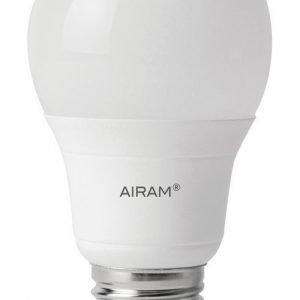 LED-pakkaslamppu Airam -40 °C E27 5