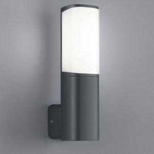 LED-seinävalaisin Ticino 70x110x270 mm antrasiitti