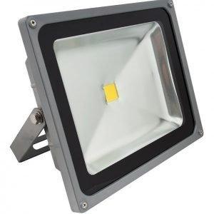 LED valonheitin BASIC 30W 4500K IP44