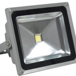 LED-valonheitin LED Flood 50 IP65 50W 4000K 4000lm 225x126x185 mm harmaa