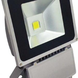LED valonheitin POWER BASIC 80W 4500K