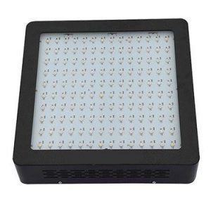 M2 700W LED Kasvivalaisin