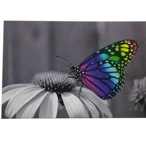 Nordlux Led Canvastaulu Butterfly