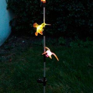 Star Trading Sol Pinne 3 Kolibris Aurinkokennovalaisin Monivärinen